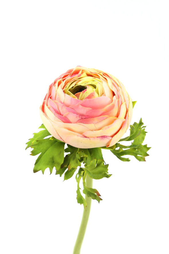 Ranunculus Pink Real Touch