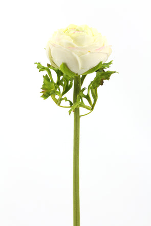Ranunculus White Real Touch