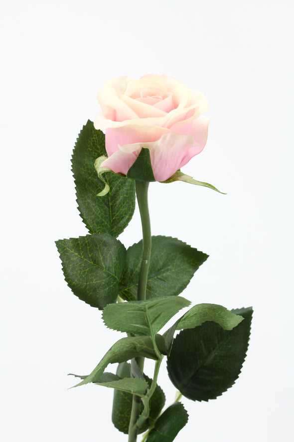 Rose Stem Half Bloom Ice Pink 55cm Real Touch