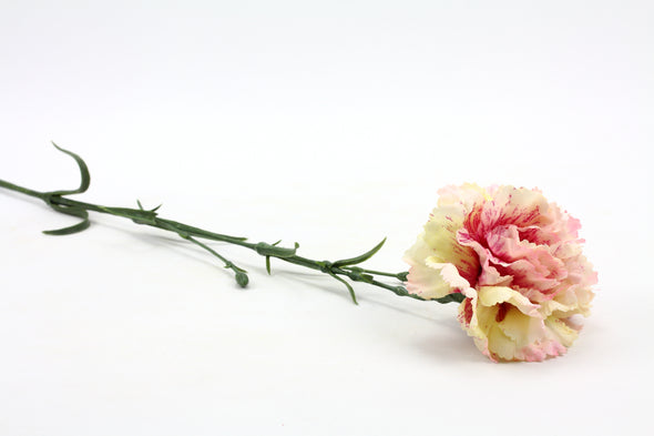 Carnation Cream Pink 61cm