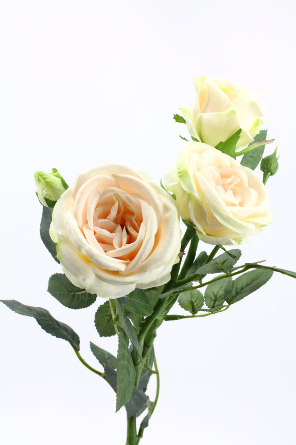 Sabrina Rose Spray Champagne 66cm