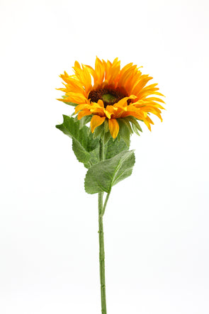 Single Medium Sunflower Yellow 70cm