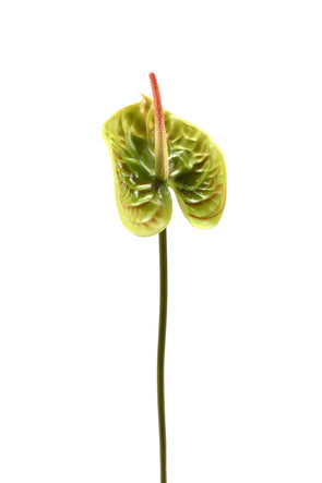 Anthurium Large Artificial Flower Stem - Green 68cm Real Touch