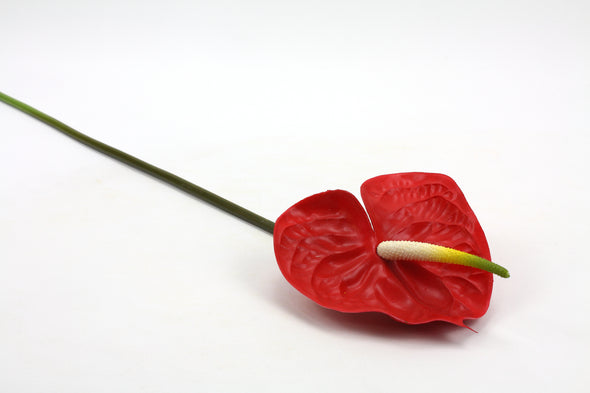 Anthurium Large Stem Red 68cm Real Touch