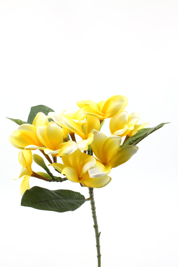 Frangipani (Plumeria) Artificial Flower Spray - Yellow Cream 76cm