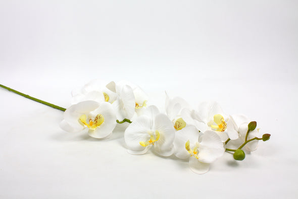 white artificial orchid stem