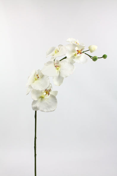 Phalaenopsis Orchid Spray White 78cm