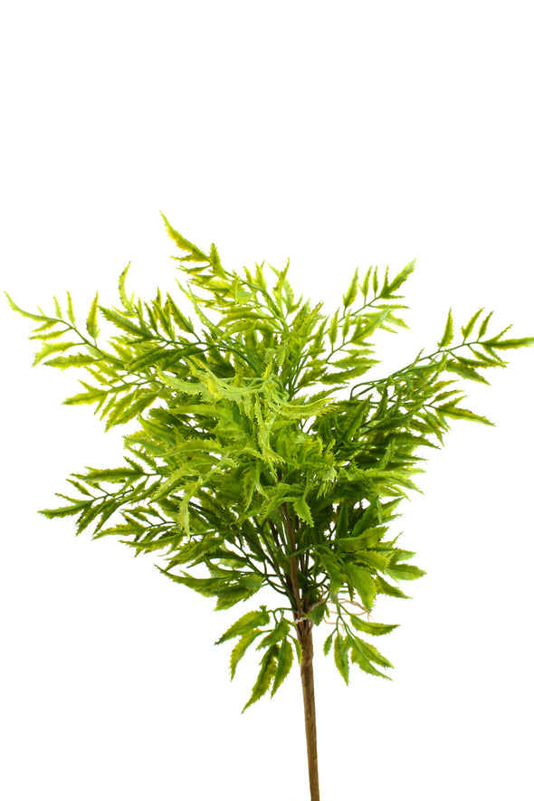 Rainforest Fern Bush 42cm
