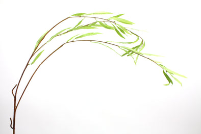 Willow Leaves Spray Green 128cm