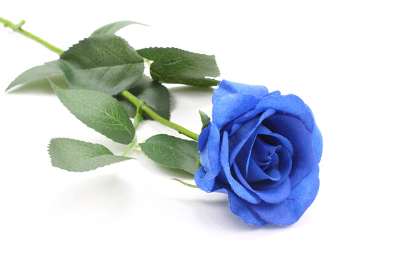 Rose Half Bloom Deep Blue Real Touch 55cm
