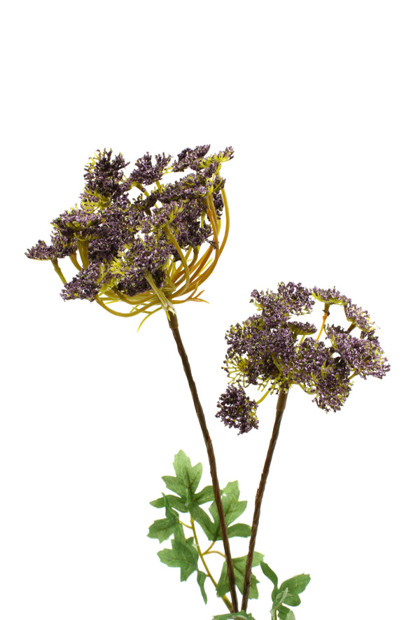 Queen Anne Lace Spray Purple 60cm