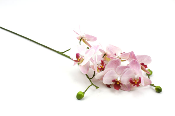 pink artificial orchid flower stem