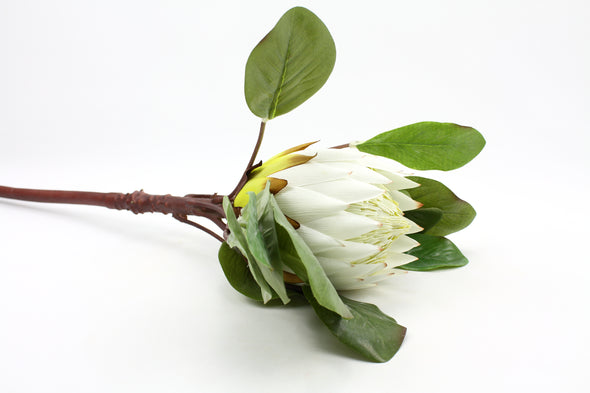 Giant Protea Artificial Flower - White 81cm