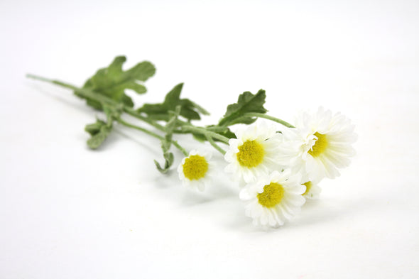Daisy Bush Artificial Flower Spray - White 30cm