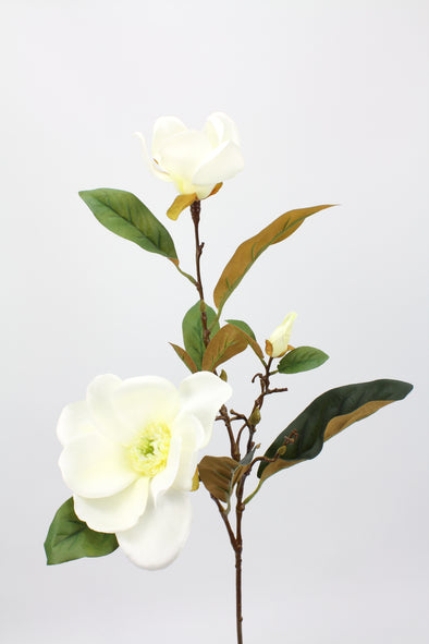 Magnolia Spray Cream White 81cm