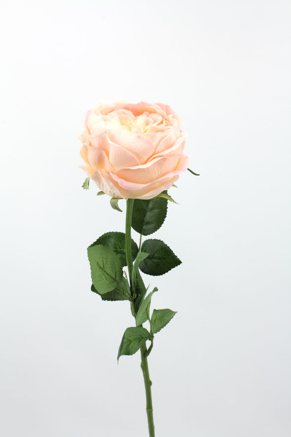 David Austin Rose Open Bloom Soft Touch Artificial Flower - Pink Cream 69cm