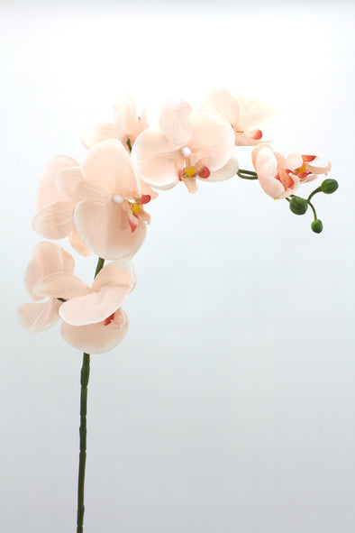 Phalaenopsis Orchid Spray Medium Real Touch Artificial Flower Dusty Pink 80cm