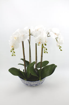 White Phalaenopsis Orchid Artificial Flower Arrangement In Blue & White Oval Dynasty Pot - Real Touch