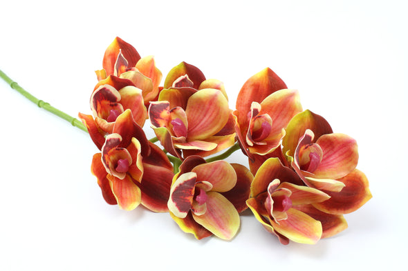 Orchid Cymbidium Flame Brown Orange Real Touch 70cm