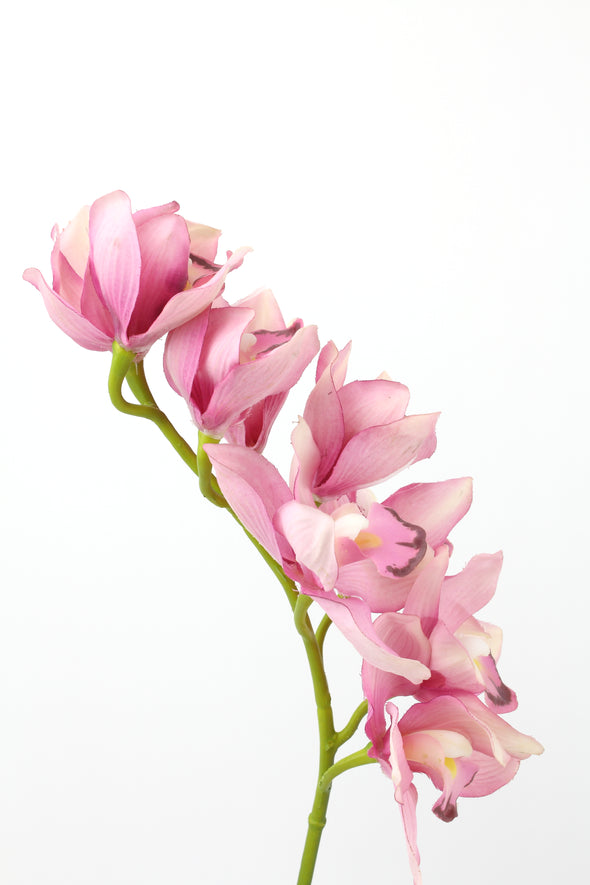 Orchid Cymbidium Pink Real Touch 70cm