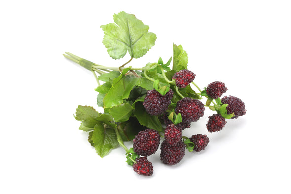 Artificial Raspberry Small Bunch Red 20cm