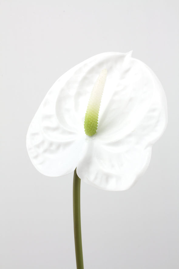 Anthurium Artificial Flower Stem -  White 58cm