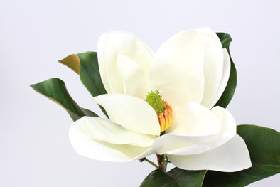 Magnolia Stem Artificial Flower Large Bloom White Real Touch 74cm