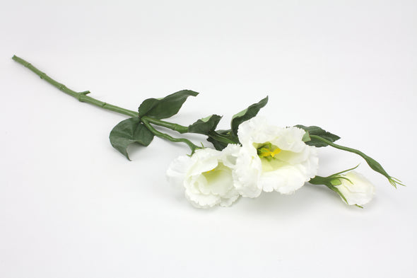 Lisianthus Spray White 64cm