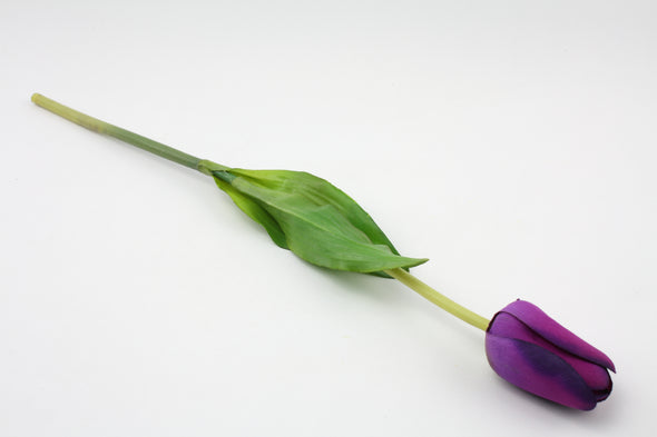Tulip Standard Head Purple 51cm