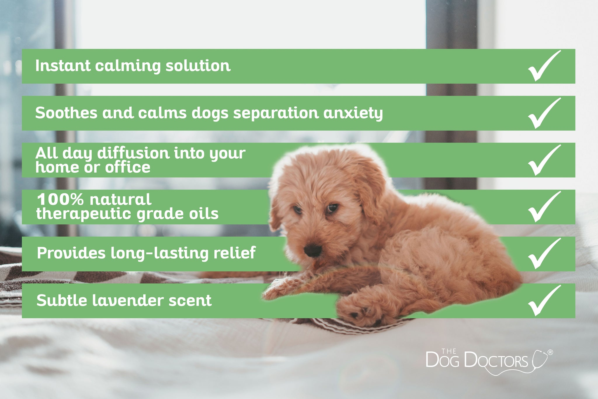 Natural Calm Lavender Diffuser For Dogs The Dog Doctors