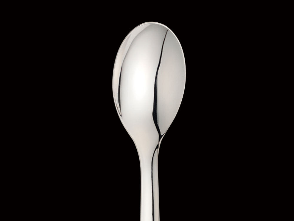 Stainless Dinner Spoon