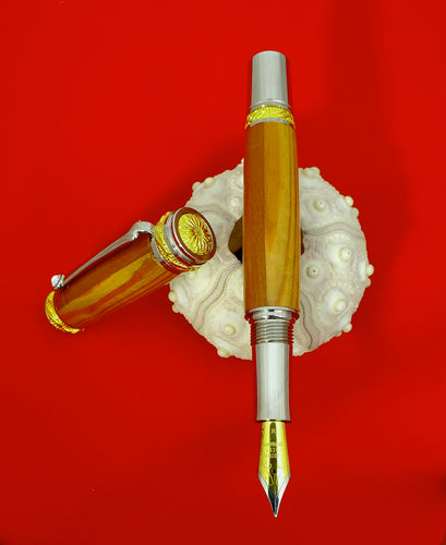 Einstein Compass Fountain Pen
