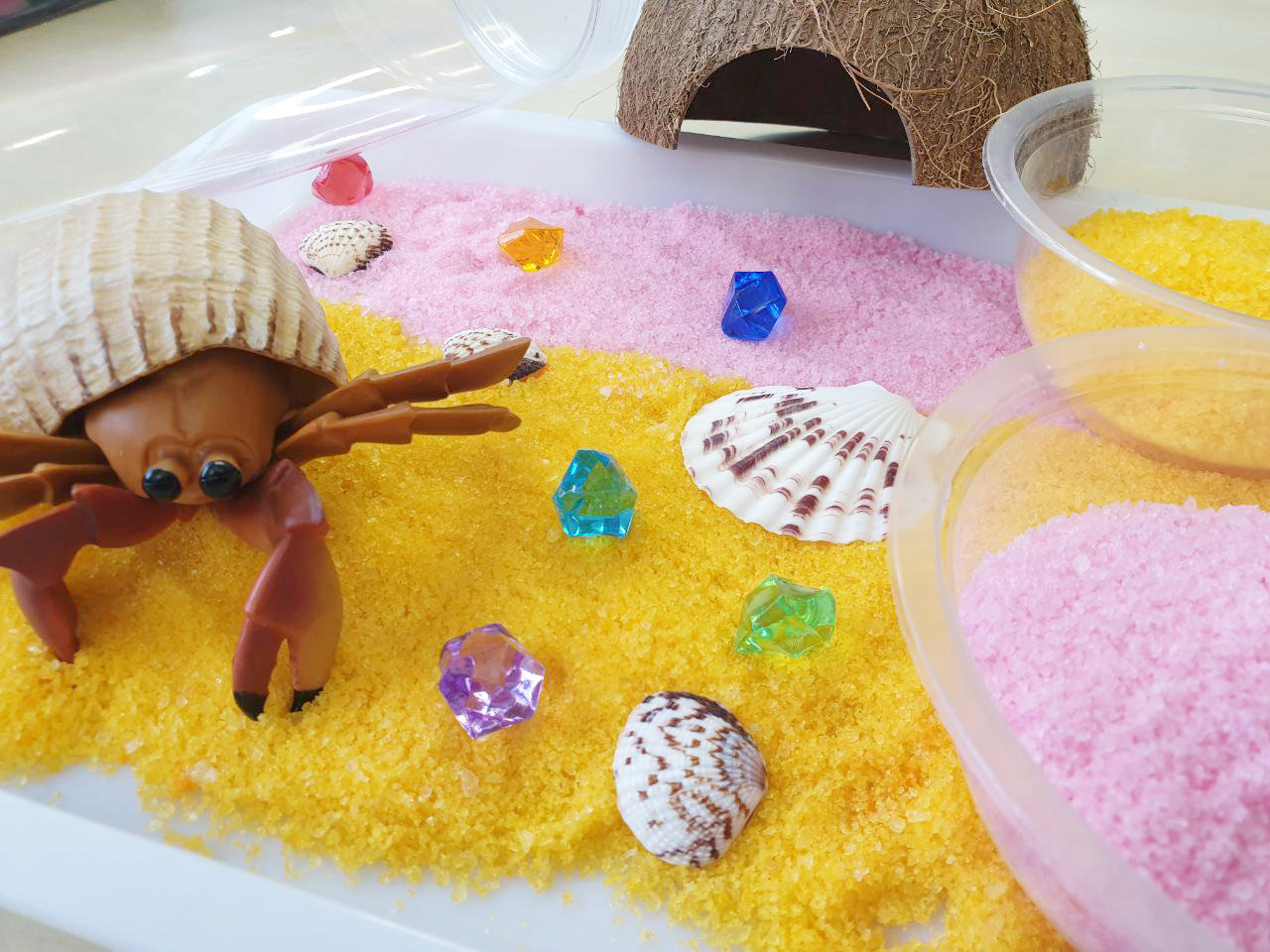'A house for hermit crab' inspired Premium Multi-sensory Kit