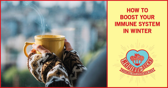 Rooibos Rocks boost your immune system this winter blog image