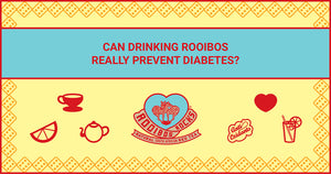 Can drinking rooibos really prevent diabetes?
