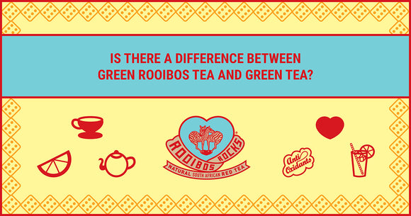 Green Rooibos Tea vs Green Tea