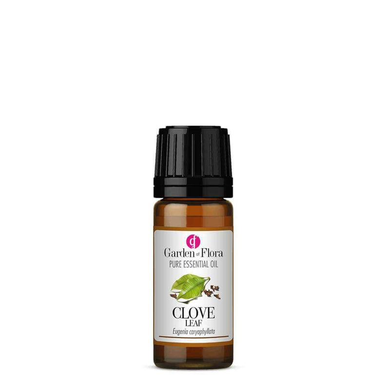 Garden of Flora - Clove Leaf Pure Essential Oil 10ml - Essential Oil