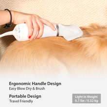 iPettie 2 in 1 Pet Grooming Hair Dryer and Slicker Brush