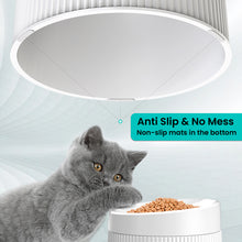 Elevated and Titled Cat Food Bowl Cat Dish, Pet Feeding Station with Stand for Small Dog