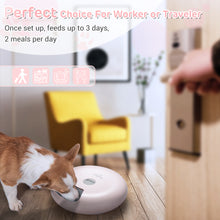 Donut 6-Meal Automatic Pet Feeder with Programmable Timer
