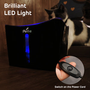 Black, Kamino LED Light Pet Water Fountain with Switch and USB Port