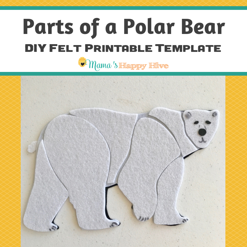 image relating to Bear Template Printable identified as Sections of a Polar Go through Puzzle - Printable Template