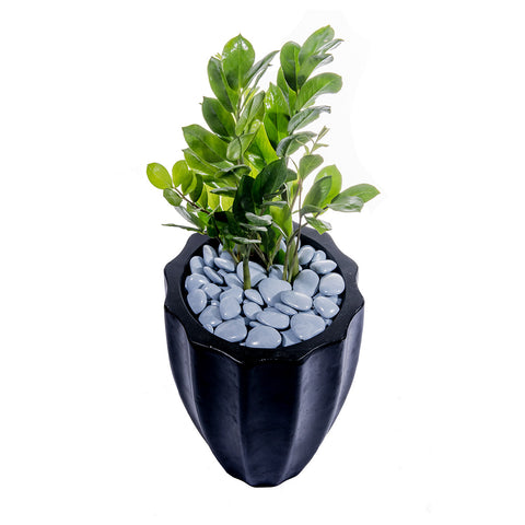 Grolife Eco Pebbles - Grey - Grolife Eco Products