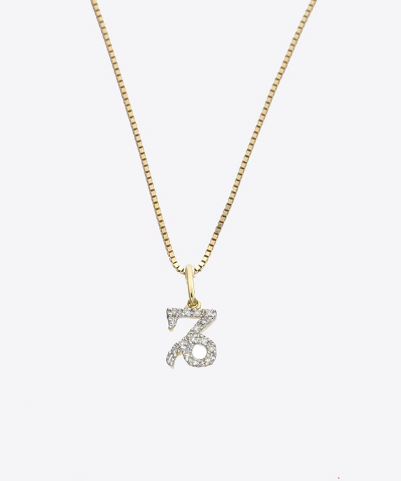 Capricorn Diamond Charm Necklace | 10K Gold & 14K Gold