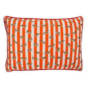 Racing Rabbits Stripe Cushion by Mister Berwyn