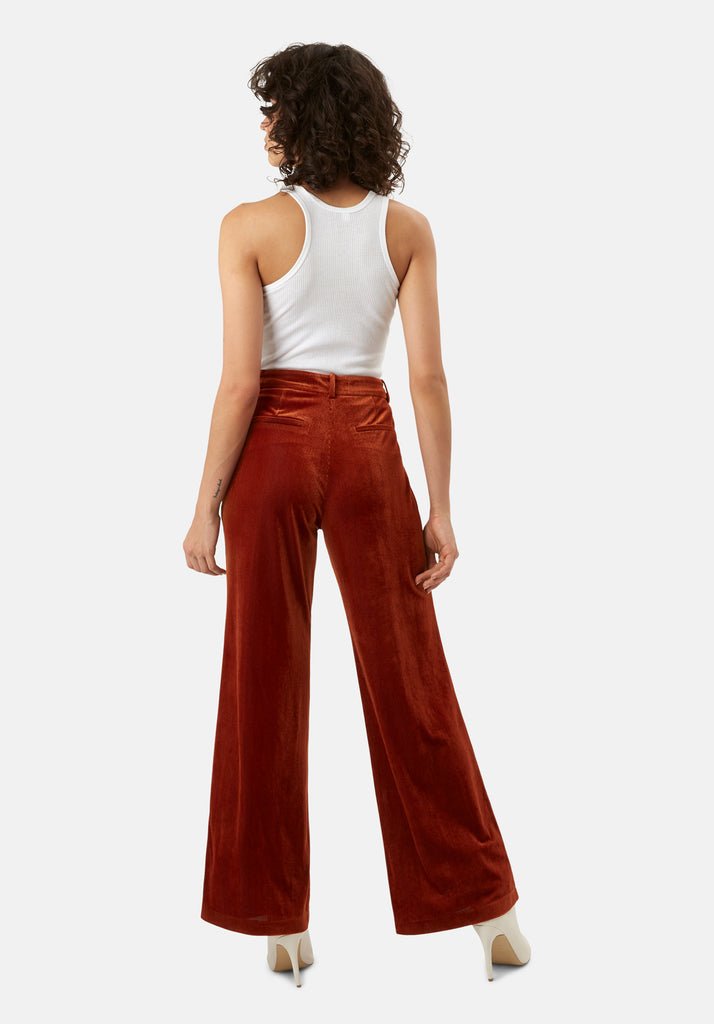 Traffic People JIC Straight Leg Velvet Trousers in Rust Brown Back View Image