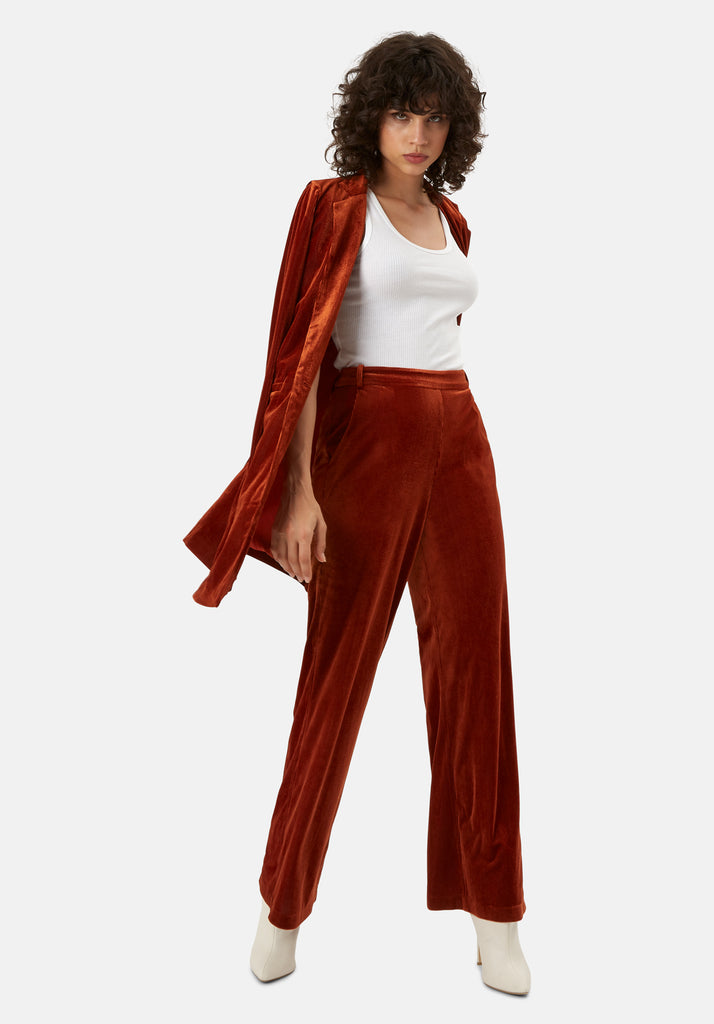 JIC Straight Leg Velvet Trousers in Rust Brown