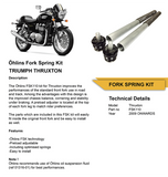 Öhlins Front Fork Springs and Top Cap for Triumph Thruxton 2008-2015 FSK110