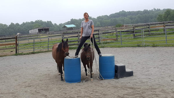 Kirsten Reister owner and trainer at Positive Way Horsemanship, in action.