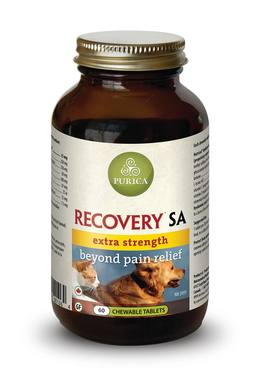 Recovery SA Extra Strength for Pets